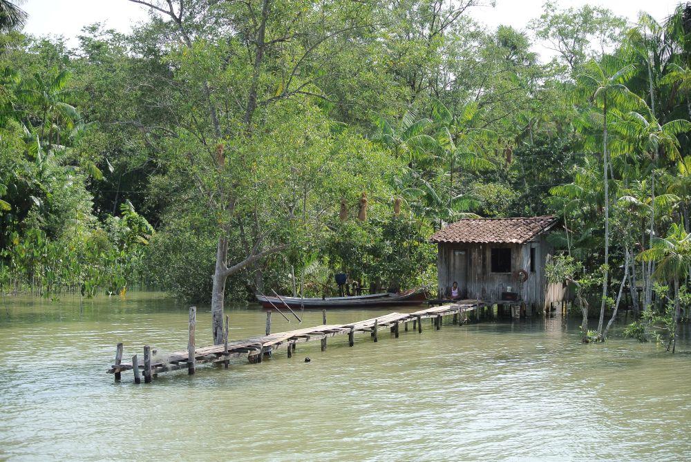 Seitenarm des Amazonas mit einer Hütte der Indigenen