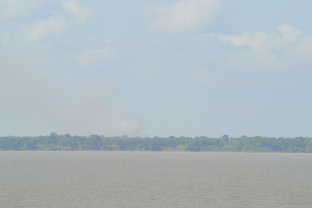 Brand im Regenwald des Amazonas