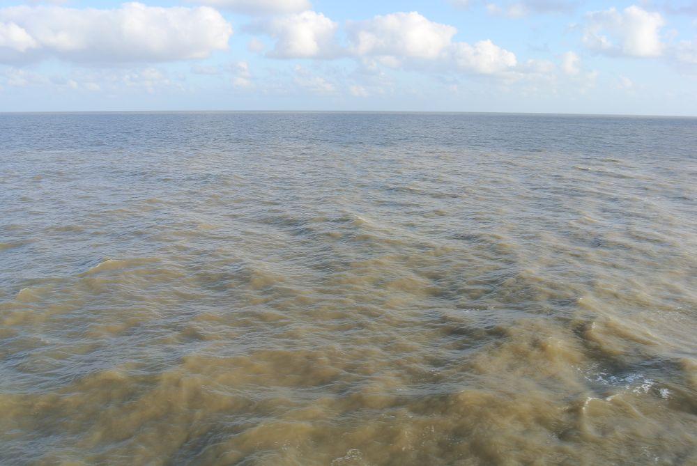 Delta des Amazonas