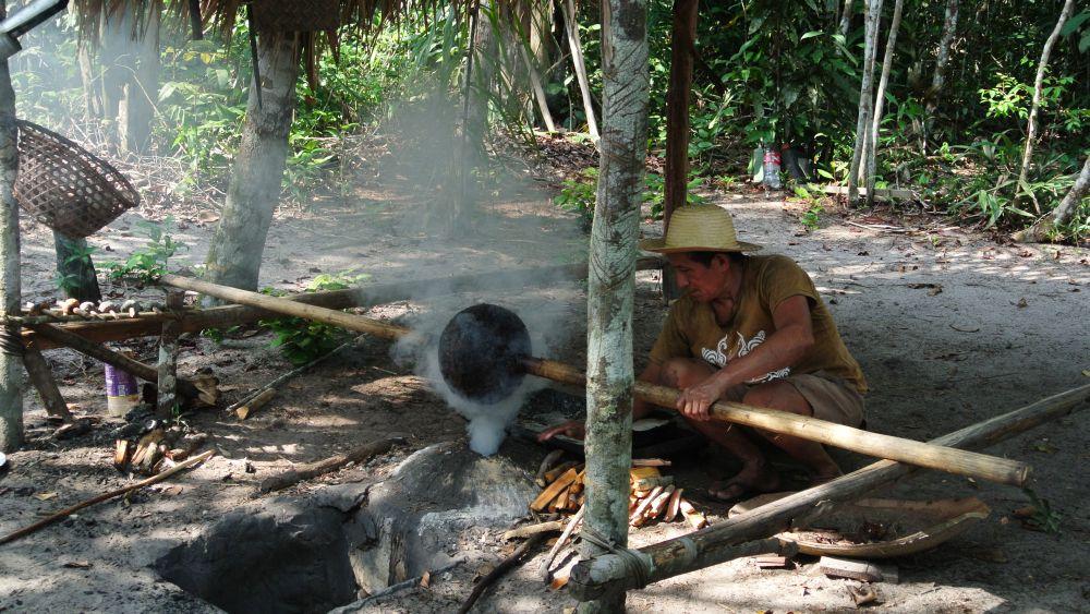 Kautschukproduktion im Regenwald