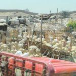 Töpferwaren in Kairo