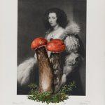 Prinzessin Pilz 2017 Acryl auf Heliogravüre 37,5cm x 25cm
