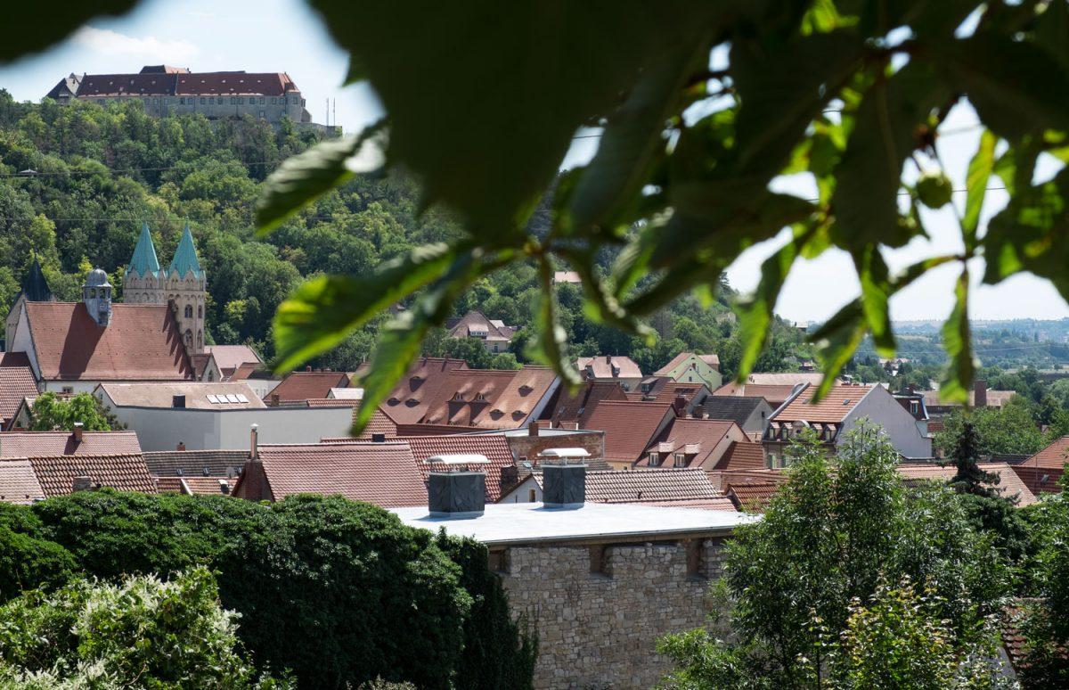 Blick über die Dächer von Freyburg
