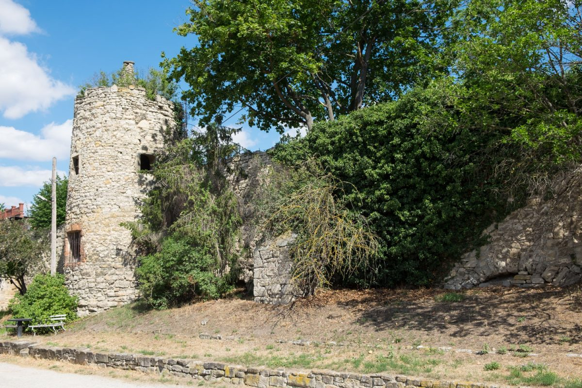 Stadtmauerring in Freyburg mit Turm und Bäumen